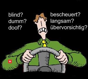 Wie dumm ist der Schweizer Autofahrer?